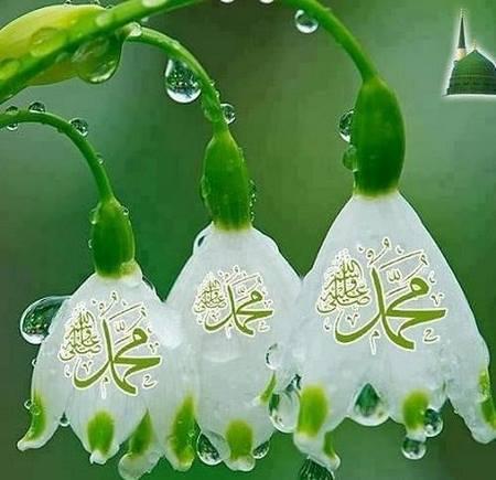 تبریک عید مبعث به عربی