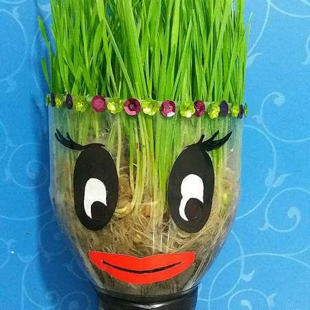 سبزه عید به شکل مزرعه