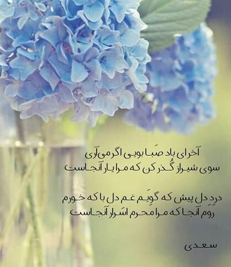شعرنوشته های سعدی