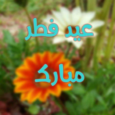 کارتهای تبریک عید فطر