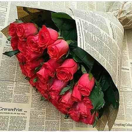 عکس گل رز سبز