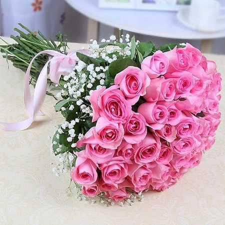 عکس گل عشق جدید