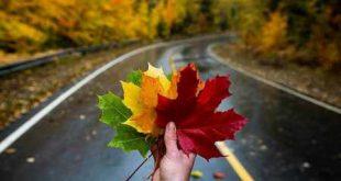 انواع متن پاییزی عاشقانه