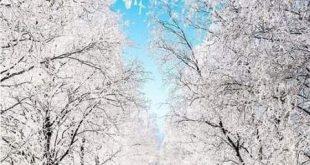 متن برفی قشنگ | متن درمورد برف